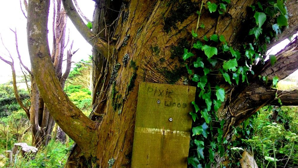 """Na stromu připevněná dřevěná cedule s nápisem """"pixie wood"""""""