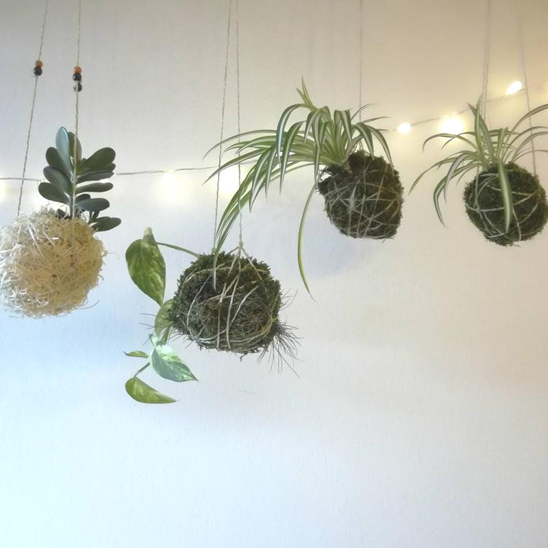 DIY: Kokedama, japonské pěstování na niti