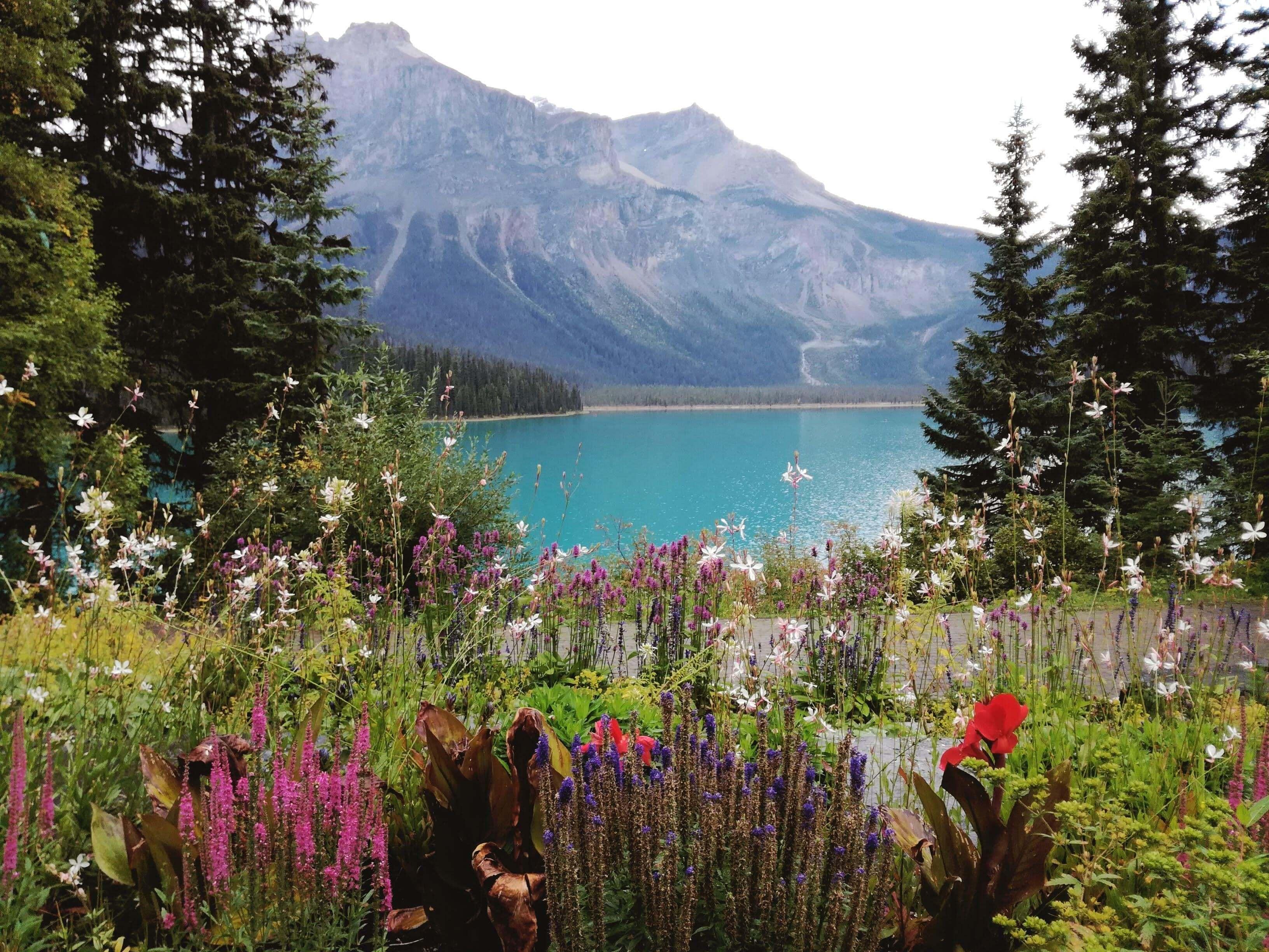 Kanadská kronika: Národní park Yoho